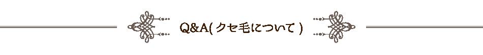 Q&A(クセ毛について)